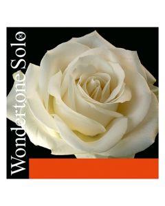 Pirastro Wondertone solo violino 1 - Mi silvery steel