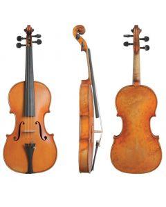 Violino Gewa Germania 10 Dresda - serie limitata