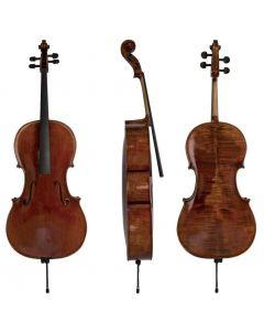 Violoncello Gewa Maestro 26