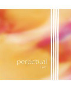 Pirastro Perpetual contrabbasso Orchestra set