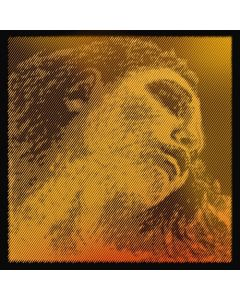 Pirastro Evah Pirazzi Gold violino 4 - Sol argento