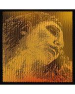 Pirastro Evah Pirazzi Gold violino 2 - La